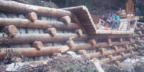 Briglia in legname Rio Vorciar